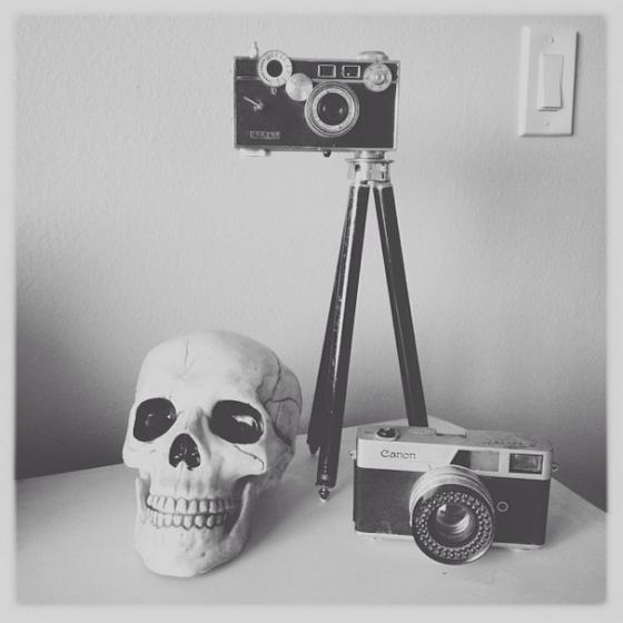 Skull and vintage cameras