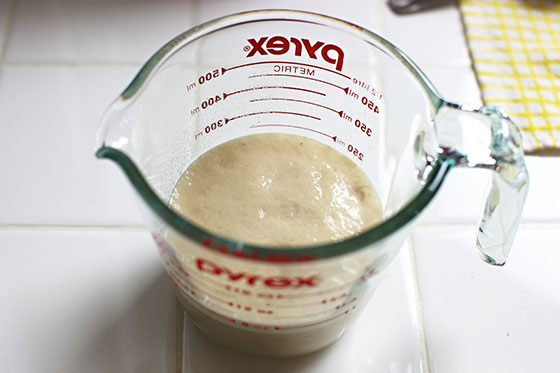 Frothy Yeast