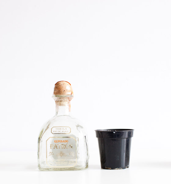 How to make planters out of Patron bottles #ArtofPatron