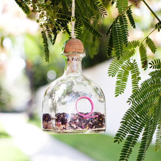 DIY Patron Bottle Hanging Bird Feeder