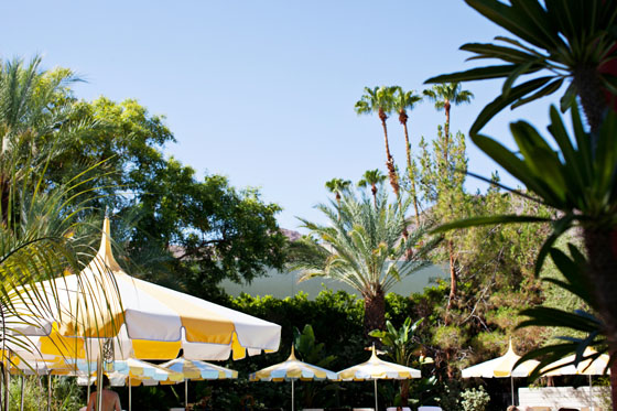 Checking In: A Weekend at The Parker Palm Springs via Melodrama
