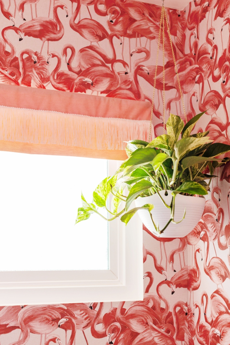 Flamingo Wallpaper and Fringe Window Valance